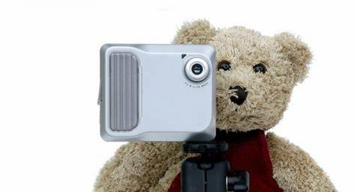Nanny cam with a teddy bear